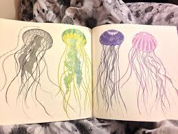 Small Picture Animal Kingdom Coloring Book Jellyfish Coloring Pages