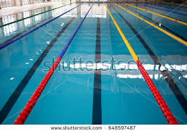 olympic swimming pool lanes. Olympic Swimming Pool Lane Markers Lanes C