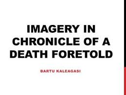 chronicle of a death foretold essay brilliant short novels you can in a sitting research paper academic service muvattupuzha info background