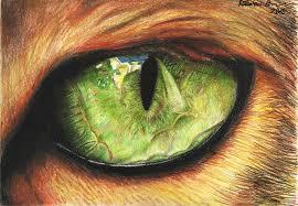 1024x709 cat eye drawing by itsanne