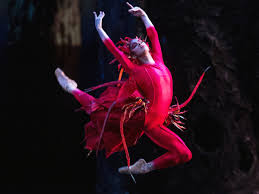 Image result for misty copeland firebird