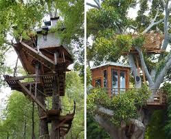 tree house modern building plans21 modern