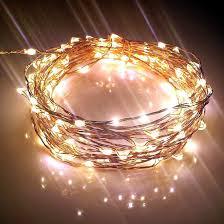 Gartner Led Lighting Pin By Maria Parra On Style Staples Starry String Lights