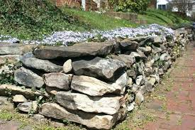 retaining walls around trees building a stone wall how to build a stone retaining wall building stone wall around trees retaining wall near tree roots