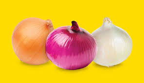 Image result for pics of an onion