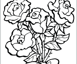 Coloring Pages Roses Flowers Psubarstoolcom