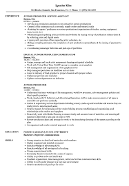 detail oriented examples junior producer resume samples velvet jobs