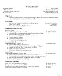 Scholarship Resumes Examples Resumes Resume Example Writing Call