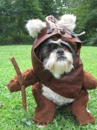 diy chewbacca costume for dog clublilobal com