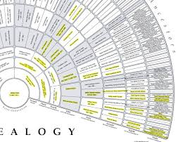 Getting Started With X Dna Genealogy Research