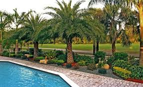 florida landscape design pictures beautiful idea landscape design tropical pool landscapes small front yard landscaping ideas