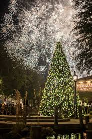 Tree Lighting Jacksonville 11th Annual St Johns Town Center Holiday Spectacular And