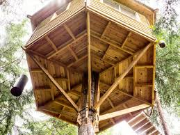 Best Tree House Plans Photos Ideas Designs And Design Free Diy