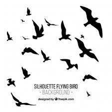 birds flying away silhouette. Exellent Silhouette Silhouette Flying Bird Background And Birds Flying Away A