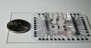 Lab On A Chip Reusable Lab On A Chip Developed Laboratory News