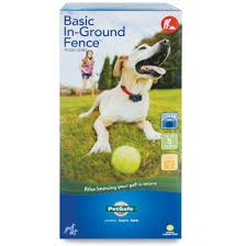 basic in ground fence acirc cent by petsafe pig