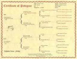 Blank Pedigree Chart For Dogs Free Logic Pro Software For Mac Free Dog Pedigree Software
