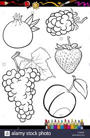 Cartoon Fruits Set For Coloring Book Stock Photo Royalty Free