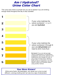 Pedialyte Chart Fueling For The Marathon Top 5 Common Mistakes