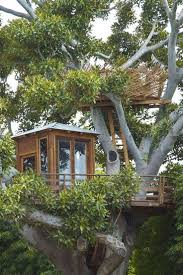 Sharing The U201cSecretu201d Of Our Worldclass Treehouse Accommodation In Treehouse Accommodation