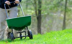Milorganite Fertilizer For Better Results