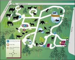 zoo maps. Simple Zoo Copy Of Zoo Maps Inside