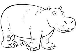 Cute Baby Hippo Coloring Pages Page Harry Potter Hippogriff