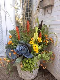 Best 25 Fall Potted Plants Ideas On Pinterest  Container Flowers Container Garden Ideas For Fall