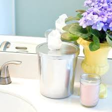 Diy Bathroom Diy Bathroom Cleaning Wipes Popsugar Smart Living