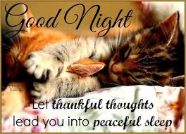 Cute Good Night Quotes Impressive Cute Goodnight Quotes Pictures Photos And Images For Facebook