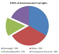 Childhood Obesity Pie Chart Academic Proofreading Essay Child Obesity New Zealand