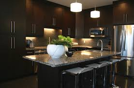 contemporary kitchens with dark cabinets. Kitchen Cabinets Contemporary Kitchens With Dark E
