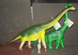 brachiosaurus size the safari brachiosaurus is an elegant scale reproduction