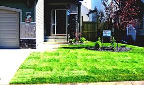 Small Picture Gardens Front Garden Design Ideas Top With Parking Home Decor Uk