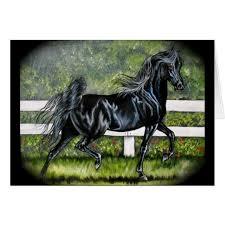 black arabian horse running.  Running Black Arabian Horse Running In B
