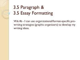 essay format co 3 5 essay format