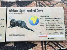 zoo exhibit sign. Beautiful Zoo Conservation And Environmental Education At The San Diego Zoo With Exhibit Sign S