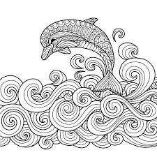 Dolphin Vectoren Illustraties En Clipart 123rf