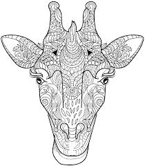 Coloring Pages Of Wild Animals Giraffe Colouring Page Free Colouring