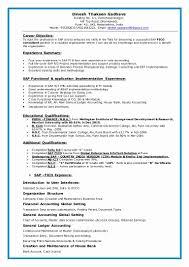 Resume Of Sap Mm Consultant Oneswordnet