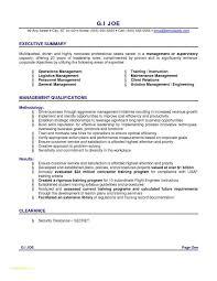 Resume Critique Service Or English Writing Proficiency Takenosumi Com