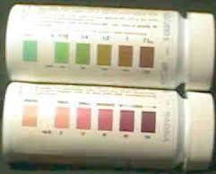 Image Result For Diastix Color Chart Information Packrat