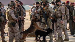 US didn't leave service dogs in ...