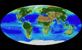 How Earth Changed In 20 Years Captured In Captivating Nasa Animation