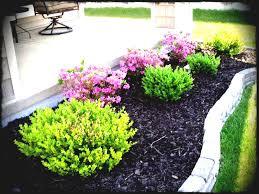 low maintenance garden border ideas for easy care plants tips full