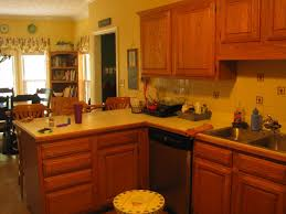 For Painting Kitchen Walls Painting Kitchen With Golden Oak Cabinets House Decor