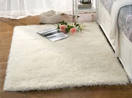 Small Picture area rugs stunning homegoods rugs Home Goods Oriental Rugs