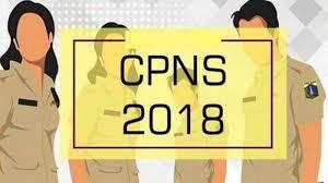 Bkn pakai sistem ranking untuk isi formasi cpns 2018 yang kosong. Sistem Ranking Gantikan Passing Grade Tes Skd Cpns 2018 Hanya Untuk Dua Formasi Ini