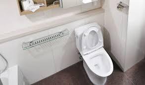 ants in bathroom. Ants Near The Toilet Ants In Bathroom O