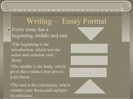 mr hatala s writing history essays writing essay